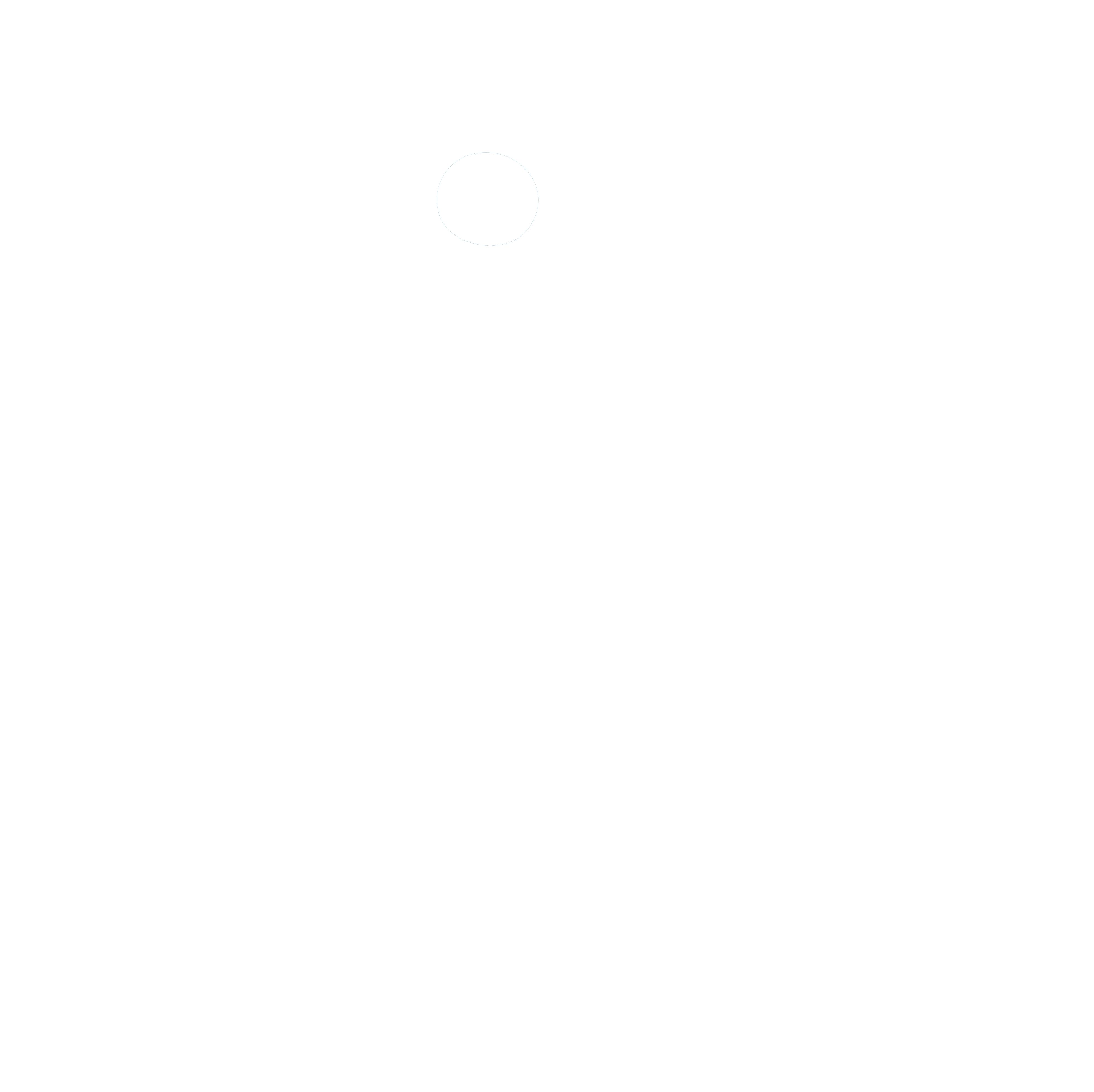 HANDI'CHIENS